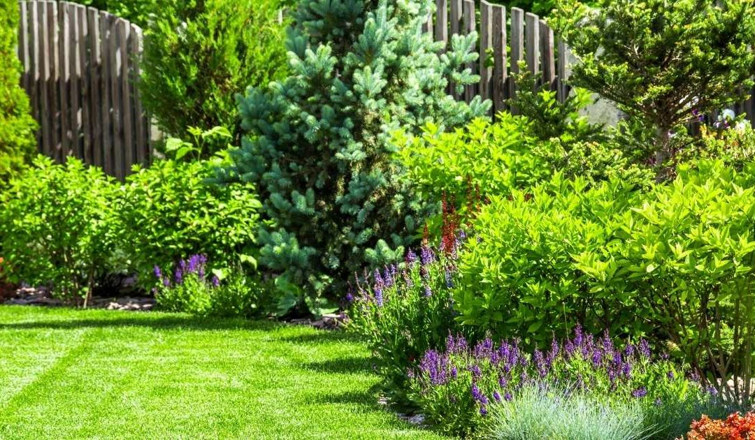 7 Ideas to Get Your Garden Ready for the Summer